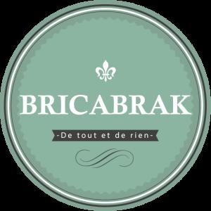 logo_bricabrak