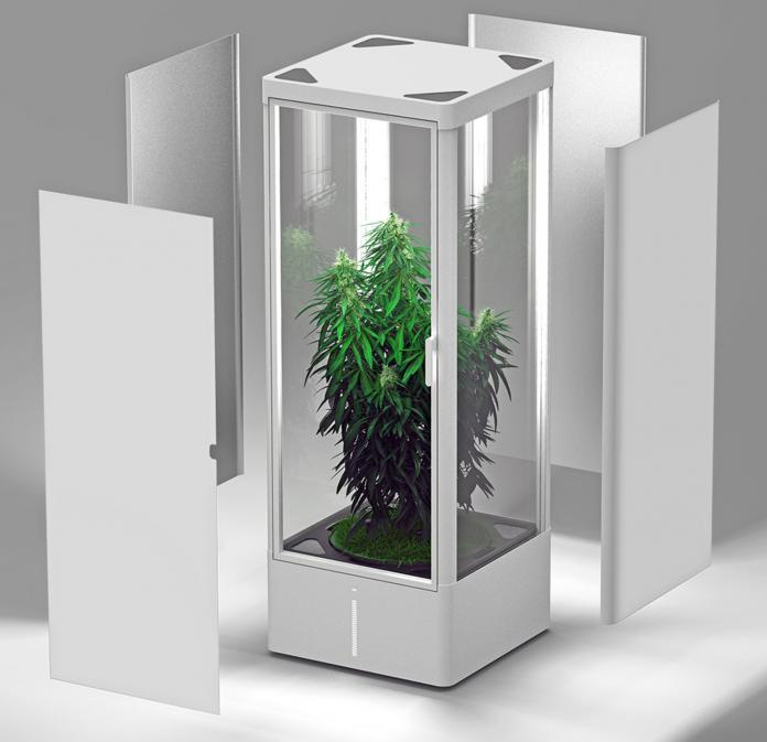 grow-box